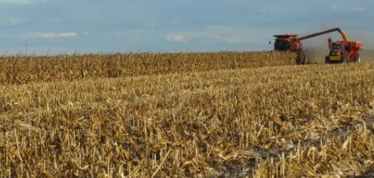 New Corn Yield Set: 455 Bushels/Acre!