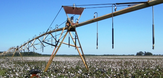 Reinke Irrigation offering Workshop at SC Agribiz & Farm Expo