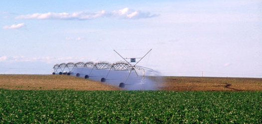 Making the Most of Your Irrigation System Workshop Being Offered