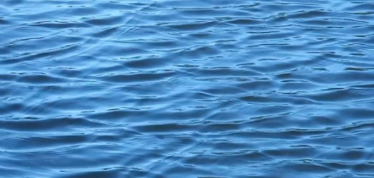 Late Thursday a federal judge in North Dakota issued a preliminary injunction against the Environmental Protection Agency's Waters of the US rule,...
