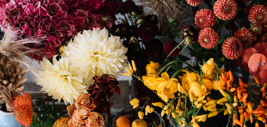 Midlands Fall Plant and Flower Festival Returns