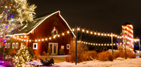Local Farms Plan Bounty of Holiday Activities