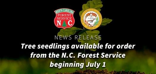 NC Commissioner Steve Troxler: N.C. Forest Service Annual Tree Seedling Sale