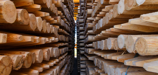 A Pandemic Assistance Program for the Timber Industry
